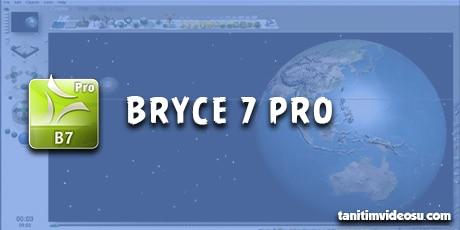 3d bryce 7 pro