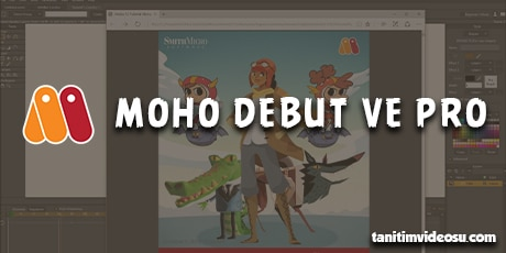 2d Moho debut pro
